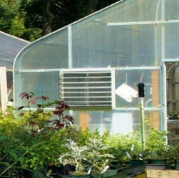 best cheap greenhouse