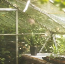 how does a greenhouse work