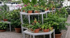best greenhouse shelving