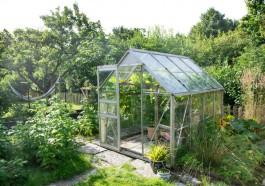 Prepare the Greenhouse for Winter
