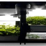 Best Hydroponic Grow Kits