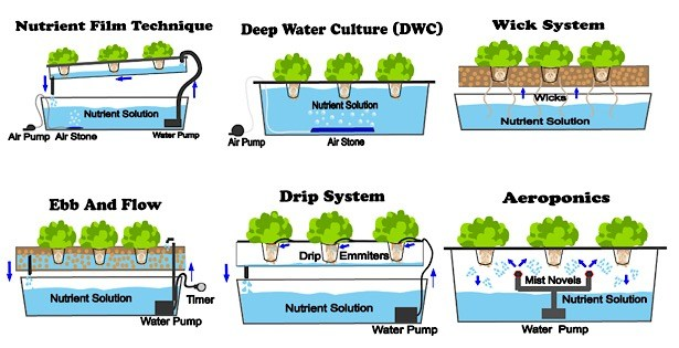 Hydroponic Types