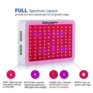 Roleadro 300W Series LED Grow Light