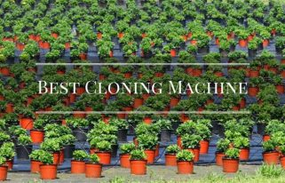 Best Cloning Machine