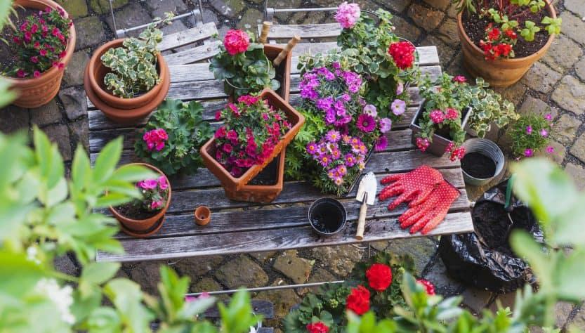 Benfits of a Garden