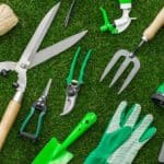 10 Top Garden Tools Every Gardener Needs
