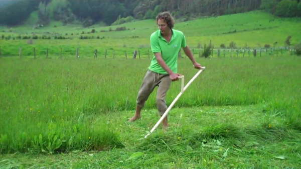 Weed cutting with scythe