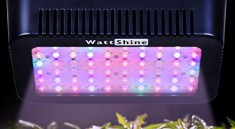 MarsHydro 300W LED Grow Lights