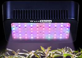 MarsHydro 300W LED Grow Lights